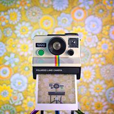El fotógrafo alemán J. Flynn Newton nos presenta un interesante proyecto titulado CameraSelfies donde a partir de numerosos modelos de cámaras antiguas, una misma composición y un colorido fondo nos presenta bellas imágenes donde la misma cámara se refleja en su propio lente.