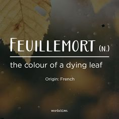 No one ever has much trouble describing their kid's latest tantrum, the terrible movie they watched last night or why we should Feuillemort - the colour of a dying leaf