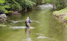 1000 images about adventures on pinterest mountain for Stone mountain fishing