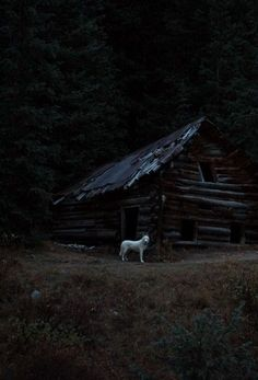 Deep in the Woods, there is an abandoned looking House, it's okay, because inside its actually really nice, the outside is enchanted to look abandoned and rundown. A hooded figure live here. She adopts all the abandoned animals of night Vale. Nature Aesthetic, Witch Aesthetic, Aesthetic Dark, Viking Aesthetic, The Ancient Magus, Vegvisir, Slytherin Aesthetic, Southern Gothic, Dark Photography