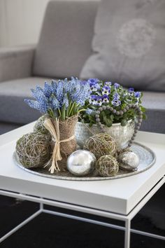 Pynt et vakkert fat med muscari, viola og mosekuler.