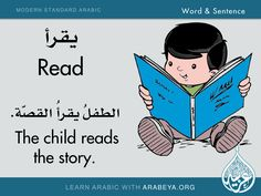 Learning Arabic MSA (Fabienne) Word and Sentence (Modern Standard Arabic) Modern Standard Arabic, Good Vocabulary Words, Arabic Phrases, Arabic Verbs, Learn Arabic Online, Learn Arabic Alphabet, Arabic Lessons, Learn Quran, English Language Learning
