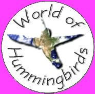 When we lived up in New Hampshire, I had a hummingbird feeder that I would hang out in our front yard. There were at least 3 or 4 ruby-throated hummingbirds that would frequent it. It was fun to wa…