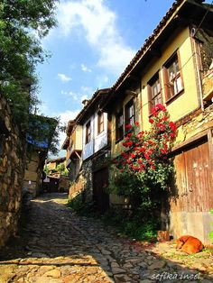 cumalıkızık by Şefika İNCEL on 500px ......old street in Cumalikizik - Bursa,Turkey