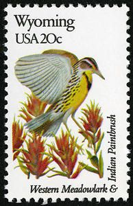 Wyoming state bird and flower stamp, issued 1982.