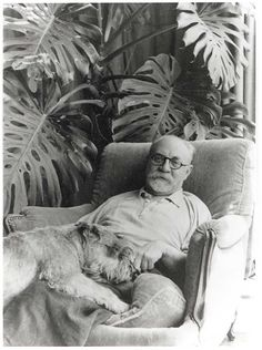 Matisse: Animal Lover