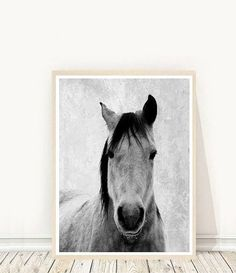 Horse Photo, Printable Art, Horse Art Print, Horse Print, Black And White Horse…