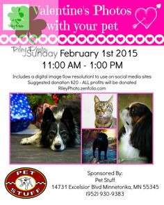 Stop by and get your Valentine's Day photo taken at Pet Stuff in Minnetonka, MN from 11AM - 1PM