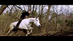 THE HORSEARCHER - OFFICIAL TRAILER