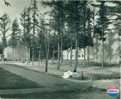 Valtherlaan Emmen (jaartal: 1960 tot 1970) - Foto's SERC