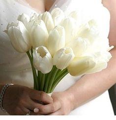 ivory/white wedding tulips