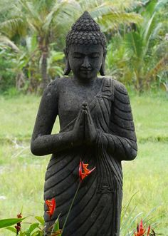 Buddha with birds of paradise ♥ #buddha