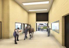 Primeiro terminal para animais quase finalizado | SAPO Lifestyle