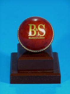 Mount your own cricket ball on a base and include some engraving to treasure it forever! Trophies And Medals, Man Of The Match, Cricket Match, Champs, Snow Globes, Base