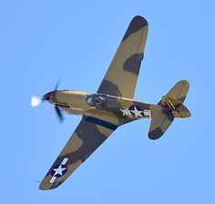 Curtiss P-40F Warhawk Lee's Hope from the Fighter Collection