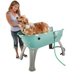Bathe and keep your dogs clean with this elevated grooming station, perfect to use on a summer day.