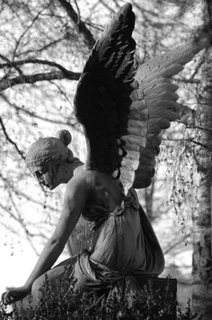"""☫ Angelic ☫ winged cemetery angels and zen statuary - Pierre the III ~ """"Crying Angel"""" Cemetery Angels, Cemetery Statues, Cemetery Art, Weeping Angels, Angels Among Us, Angels And Demons, Statue Ange, Crying Angel, Sad Angel"""