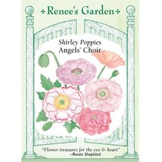 Renee's Garden Poppy Shirley Angel's Choir - Flower Seeds - Seeds