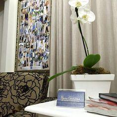 Se você mora em Jaraguá do Sul ou região agende sua visita em nosso showroom pelo e-mail flaviaonlinestore@gmail.com ou pelo Whatsapp 47 9953-1716. Veja todas as novidades de pertinho .