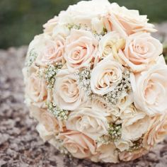 Rose and baby's breath