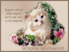 Name Day, Birthday, Animals, Image, Thoughts, Photos, Birthdays, Animales, Animaux