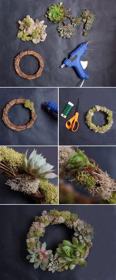 DIY Succulent Wreaths // alanajonesmann.com #succulents #diy