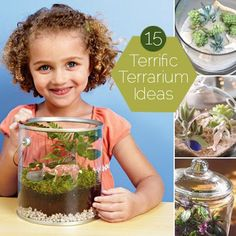 15 Terrific Terrarium Ideas. Grayson and I are doing this on a rainy day this summer. He loves the colored sand terrarium :)
