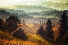 ξύλινο σπιτάκι στο δάσος
