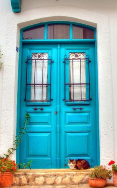 Bozcaada, Turkey    WHO COULD RESIST KNOCKING ON A BLUE DOOR WITH A CALICO CAT ON THE LANDING (??)……….ccp