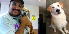 Abandoned puppy breaks in to animal shelter and found cuddling new best friend  http://www.dogheirs.com/elleng/posts/2451-abandoned-puppy-breaks-in-to-animal-shelter-and-found-cuddling-new-best-friend