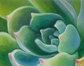 Succulent 3 Original Walnut Oil Painting 16 x by SucculentEcoArt
