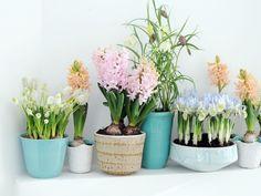 Maak je huis extra mooi met nieuwe Paaspastellen #mwpd #Pasen #paaspastellen