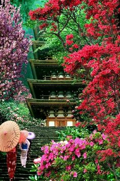 There are many beautiful places to visit in Japan all year round. The difficulty is choosing which place you want to go to the most. Place in japan, secret places in japan Beautiful World, Beautiful Places, Beautiful Beautiful, Osaka Castle, Japanese Landscape, Japanese Gardens, Cultural Architecture, Japanese Architecture, Visit Japan