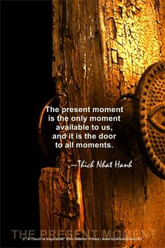 The present moment is the only moment available to us, and it is the door to all moments <3
