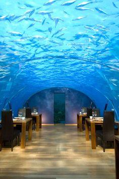 Ithaa Undersea Restaurant is a surreal dining experience and the choice boite on the island. #Jetsetter Conrad Maldives Rangali Island (Rangali Island, Maldives)