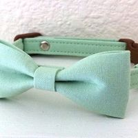 Mint Green Bow Tie Collar for Cats
