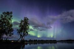 Revontulia , Auroras , Northern lights