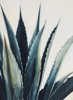 tall agave 24 x 24 inches Plant Aesthetic, Plant Painting, Elements Of Art, Background Pictures, Wall Art Quotes, Photo Backgrounds, Painting Inspiration, Photo Art, Watercolor Paintings