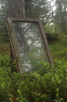 A mirror 3