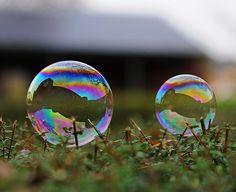 Bubblessssss....