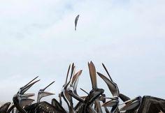 Catch! - MARIANA BAZO/Newscom/Reuters