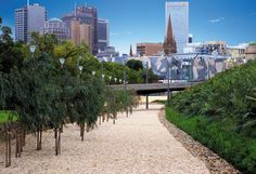 Green infrastructure is more than a nice idea. It may well prove critical for the health and well-being of all Australians and our cities. Design Firms, Urban Design, Cosmos, Architecture Design, Sidewalk, Construction, Earth, Mansions, Landscape