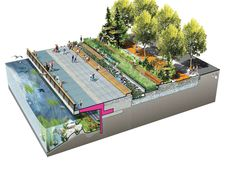BY KATHARINE LOGAN From theJuly 2014 issue of Landscape Architecture Magazine. Before Seattle grew up on its shores, Elliott Bay was a bluff-backed beach, with intertidal marshes and mudflats providing a complex and varied habitat for birds, fish, and marine invertebrates. Its sloping beaches offered salmon a safe passage through shallow waters, with plenty to….