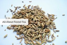 These seeds are not merely mouth fresheners. Here are some incredible health benefits of fennel tea.