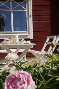 Timmerhus, frukost, breakfast, pion, Sarah Bernardt, dalarna, Sweden, spröjs, molban