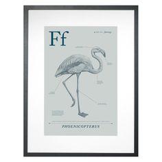 Flamingo Framed Wall Decor - 18W x 24H in.
