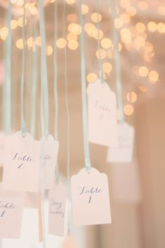 escort cards strung with ribbons Photography by beach-productions.com  Read more - http://www.stylemepretty.com/2013/09/24/north-carolina-wedding-from-beach-productions/