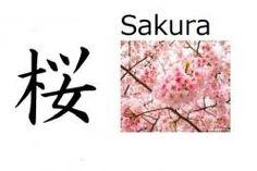 Sakura (flor del cerezo) Significado: Flor del cerezo Significado abstracto: Que será bella como la flor del cerezo / Nacida en abril Lecturas: Sakura, Sakurako, Ou, O, In Nombre de: Chica 桜 en nombres compuestos: Sakurako, Mio, Ouka El nombre es también común escrito en hiragana さくら Nombre común en China también (Ying)