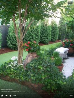 Rain and snow are going to play a huge part in your yard landscaping decisions. For example you will have to plan for your yard landscaping with care. Diy Garden, Dream Garden, Lawn And Garden, Shade Garden, Garden Bed, Inexpensive Landscaping, Small Backyard Landscaping, Landscaping Ideas, Courtyard Landscaping