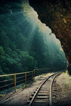 Railroad Tracks through the Forest, Columbia Gorge, Oregon